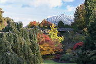 The Bloedel Conservatory and fall foliage colours in the Japanese Maples and other trees at the Quarry Gardens in Queen Elizabeth Park - Vancouver, British Columbia, Canada.