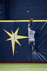 August 24, 2017 - St. Petersburg, Florida, U.S. - WILL VRAGOVIC   |   Times.Toronto Blue Jays center fielder Kevin Pillar (11) can't get to the home run by Tampa Bay Rays left fielder Corey Dickerson (10) in the eighth inning of the game between the Toronto Blue Jays and the Tampa Bay Rays at Tropicana Field in St. Petersburg, Fla. on Thursday, Aug. 24, 2017. (Credit Image: © Will Vragovic/Tampa Bay Times via ZUMA Wire)