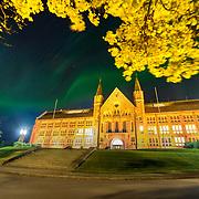Trondheim NTNU