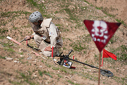 © Licensed to London News Pictures. 03/04/2013. London, UK. UN International Mine Awareness Day [FILE PHOTO NOT FOR ONLINE USE].  A Mines Advisory Group deminer uses a prodder to probe the ground as he investigates a contact from his mine detector in a minefield near Dalo Village, Kirkuk, Iraq. Photo credit: Matt Cetti-Roberts/LNP