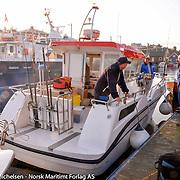 Hav- og sjøfiske