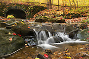 """Deer Lick Falls in the Fall<br /> <br /> Available sizes:<br /> 18"""" x 12"""" print or canvas print<br /> See Pricing page for details. <br /> <br /> Please contact me for custom sizes and print options including canvas wraps, metal prints, assorted paper options, etc. <br /> <br /> I enjoy working with buyers to help them with all their home and commercial wall art needs."""
