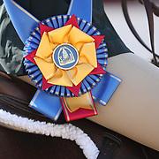 Outreach SFHJA 13 & Over Medal Final