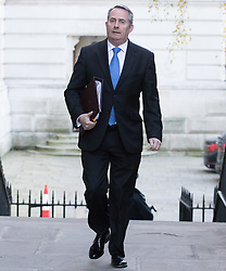 Downing Street, London, November 29th 2016. International Trade Secretary Liam Fox arrives at 10 Downing Street for the weekly meeting of the UK cabinet.