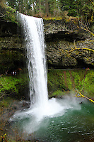 Grand South Falls in Silver Falls State Park swelled with Spring run off.