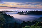 Sunrise over Salmon Creek Watershed, Sonoma County California
