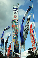 """Childrens Day Carp Banners - Children's Day or """"Kodomo no hi"""" is a Japanese national holiday on May 5, the fifth day of the fifth month and is part of the Golden Week. It is a day set aside to respect children's personalities and to celebrate their happiness. Originally it was called """"Boys Day"""", as the carp typically represent boys in Japan."""