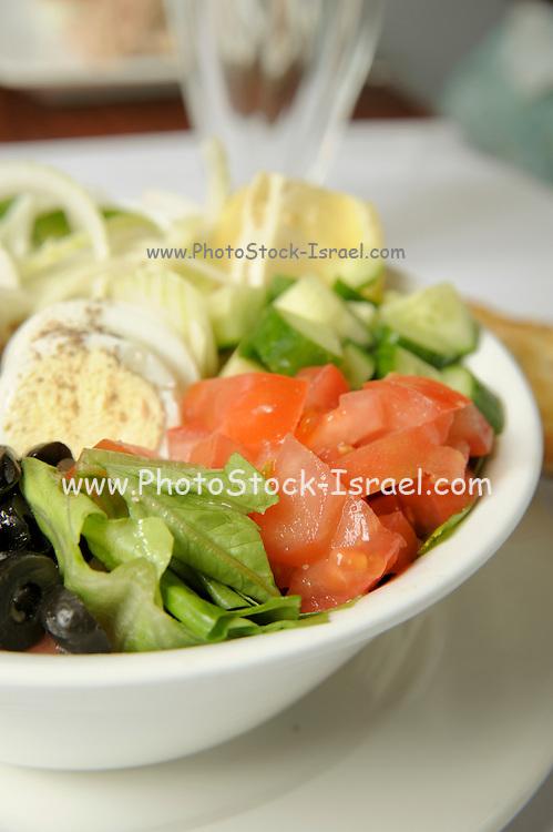 Fresh vegetable salad with black olives and egg
