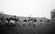 The ball  comes out to Hastie, Scottish scrum, following a line out,.Players include, left - right, Houston, Ireland, Rollo and Bruce, Scotland, Culliton, Ireland and Fisher, Scotland,..Irish Rugby Football Union, Ireland v Scotland, Five Nations, Landsdowne Road, Dublin, Ireland, Saturday 22nd February, 1964,.22.2.1964, 22.2.1964,..Referee- A C Luff, Rugby Football Union, ..Score- Ireland 3 - 6 Scotland, ..Irish Team, ..T J Kiernan,  Wearing number 15 Irish jersey, Full Back, Cork Constitution Rugby Football Club, Cork, Ireland,..P J Casey, Wearing number 14 Irish jersey, Right Wing, University College Dublin Rugby Football Club, Dublin, Ireland, ..M K Flynn, Wearing number 13 Irish jersey, Right Centre, Wanderers Rugby Football Club, Dublin, Ireland, ..J C Walsh,  Wearing number 12 Irish jersey, Left Centre, University college Cork Football Club, Cork, Ireland,..K J Houston, Wearing number 11 Irish jersey, Left Wing, Queens University Rugby Football Club, Belfast, Northern Ireland,..C M H Gibson, Wearing number 10 Irish jersey, Stand Off, Cambridge University Rugby Football Club, Cambridge, England, and, N.I.F.C, Rugby Football Club, Belfast, Northern Ireland, ..J C Kelly, Wearing number 9 Irish jersey, Scrum Half, University College Dublin Rugby Football Club, Dublin, Ireland,..P J Dwyer, Wearing number 1 Irish jersey, Forward, University College Dublin Rugby Football Club, Dublin, Ireland, ..A R Dawson, Wearing number 2 Irish jersey, Forward, Wanderers Rugby Football Club, Dublin, Ireland, ..R J McLoughlin, Wearing number 3 Irish jersey, Forward, Gosforth Rugby Football Club, Newcastle, England, ..W A Mulcahy, Wearing number 4 Irish jersey, Captain of the Irish team, Forward, Bective Rangers Rugby Football Club, Dublin, Ireland,  ..W J McBride, Wearing number 5 Irish jersey, Forward, Ballymena Rugby Football Club, Antrim, Northern Ireland,..E P McGuire, Wearing number 6 Irish jersey, Forward, University college Galway Football Club, Galway, Ireland,  ..M G Culli