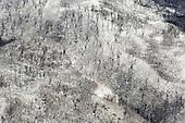 Australian bushfires-Bohdan Warchomij
