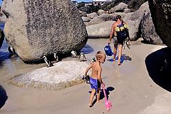 African Penguin & People
