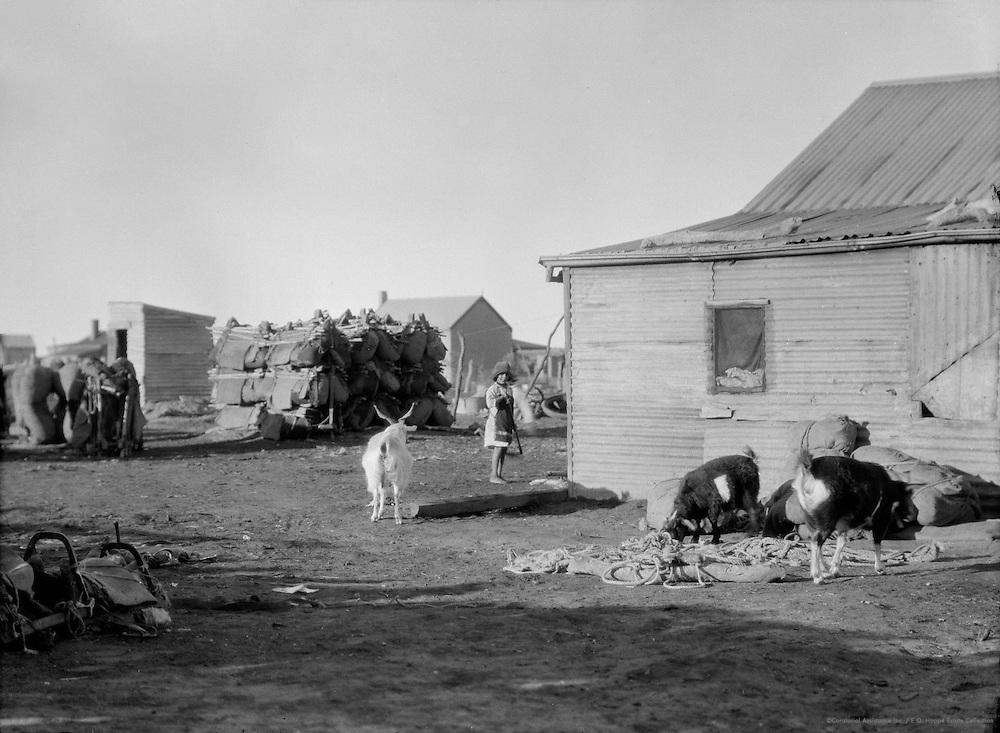 Afghan Settlement, Marree, South Australia, 1930