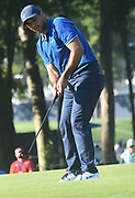 ST. LOUIS, MO - AUGUST 09: Jason Day putts on the #10 green during the first round of the PGA Championship on August 09, 2018, at Bellerive Country Club, St. Louis, MO.  (Photo by Keith Gillett/Icon Sportswire)