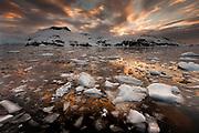 Brash ice at sunset, Cierva Cove, Antarctic Peninsula