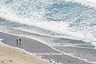 62995-00618 People walking along the beach La Jolla, CA