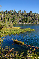"""""""Smith Lake 2"""" - Photograph shot in the morning at Smith Lake in California's Plumas National Forest."""