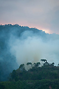 Rising smoke of Slash & Burn practice to clear forest for farming, Ranomafana National Park, Madagascar