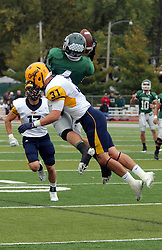 18 October 2014:  Andrew Javorka grabs a pass as he is hit from behind by Bo Goshorn during an NCAA division 3 football game between the Augustana Vikings and the Illinois Wesleyan Titans in Tucci Stadium on Wilder Field, Bloomington IL