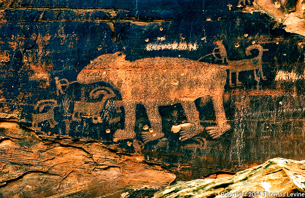 Up about 2 stories next to the road close to   Moab UT is the Bear Petroglyph. Bullet holes degrade the image, but it's still a great piece of rock art.