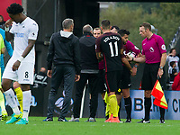 Football - 2016 /2017 Premier League - Swansea City vs Manchester City<br /> <br />  Swansea City manager Francesco Guidolin speaks with referee Swarbrick on the pitch after the end of the game at the Liberty Stadium.<br /> <br /> <br /> PIC COLORSPORT/WINSTON BYNORTH