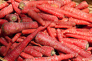 Fresh red carrots on sale in old town market Udaipur, Rajasthan, Western India,