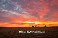 63893-02910 Sunrise at Prairie Ridge State Natural Area, Marion Co, IL