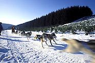 Schlittenhunderennen :: Dog Sledding