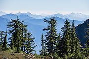 Admire vast views of Cascades peaks on Park Butte Trail in Mount Baker Wilderness, Mount Baker-Snoqualmie National Forest, Washington, USA.