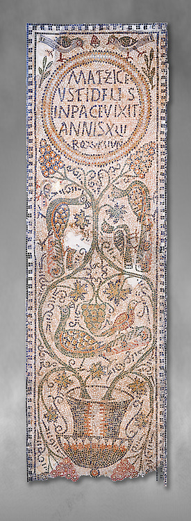 The Christian memorial funerary mosaic of Matziceus, a Libyan, with the inscription reading: 'the faithful Matziceus lived in peace for 42 years, rested (died) on the fifteenth of the calends of June'.<br /> <br /> The panel is decorated with vines which grow out of a cantharus, a Greek style drinking cup, which represents the fountain of life.<br /> <br /> 5th century Eastern Byzantine Roman mosaic from the Parish church of Demna, left AisleBardo Museum, Tunis, Tunisia. Grey background .<br /> <br /> If you prefer to buy from our ALAMY PHOTO LIBRARY  Collection visit : https://www.alamy.com/portfolio/paul-williams-funkystock/roman-mosaic.html - Type -   Bardo    - into the LOWER SEARCH WITHIN GALLERY box. Refine search by adding background colour, place, museum etc<br /> <br /> Visit our ROMAN MOSAIC PHOTO COLLECTIONS for more photos to download  as wall art prints https://funkystock.photoshelter.com/gallery-collection/Roman-Mosaics-Art-Pictures-Images/C0000LcfNel7FpLI