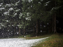 Snowfall in Middle Black Forest, Elzach-Yach, Baden-Württemberg, Germany