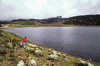 Estado Mérida, Venezuela