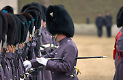 The Household Division Irish Guards on parade under inspection by senior officer
