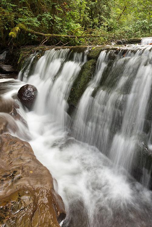 Waterfall on Sweet Creek in Oregon's Coast Range.