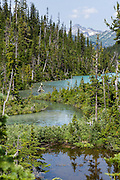 See Matier Glacier from Upper Joffre Lake, in Joffre Lakes Provincial Park of British Columbia, near Pemberton, in the Coast Range, Canada. A rough, rocky, steep hike of 10 kilometers round trip ascends (400 meters up) by a rushing stream to three beautiful turquoise lakes (colored by glacial silt reflecting green and blue sunlight).