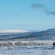 Gold miner Jukka Sarre is loading barrels of gasoline on his sledge in Lemmenjoki wilderness.