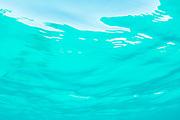 Pacific Ocean<br /> Galapagos<br /> Ecuador, South America