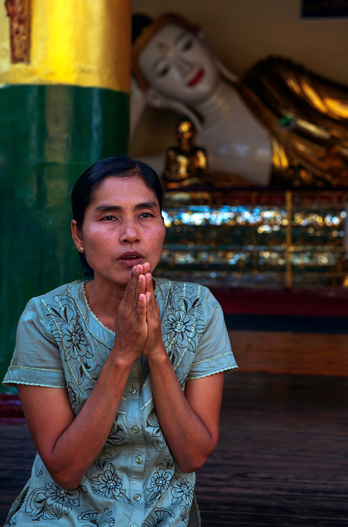 Pilgrim praying to Shwedagon Pagoda - at 112m this is Burma's biggest and most sacred pagoda. Also known as the Golden Pagoda it has been ransacked many times for the extremely valuable precious stones which decorate tis upper tiers. It draws pilgrims for all over Buddhist Asia, Rangoon, Burma.