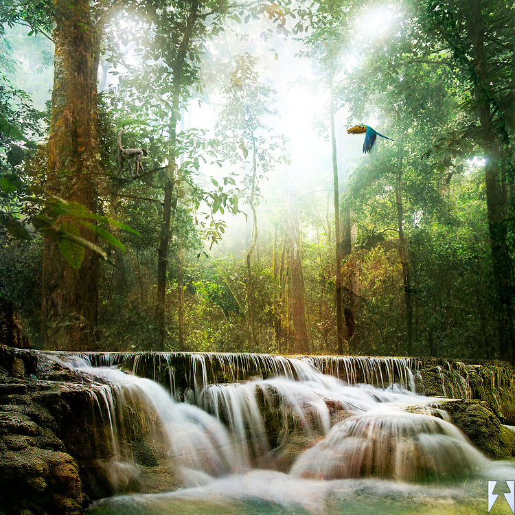 An Amazon Rainforest scene with glowing humid light coming through the tall trees and a sweeping waterfall in the foreground. There is also a parrot in flight, a chimpanzee and two frogs in their forest sanctuary.