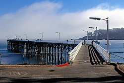Pier At San Simeon