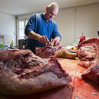 Butcher cut pieces of meat from during a Pig killing in Hungary and meat processing event in Pomaz (about 20 kilometres North of capital city Budapest), Hungary on January 28, 2017. ATTILA VOLGYI