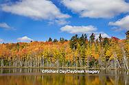 64776-01212 Pete's Lake in fall color Schoolcraft County Upper Peninsula Michigan
