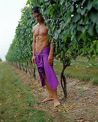 man with only a shirt around his waist standing in a vineyard