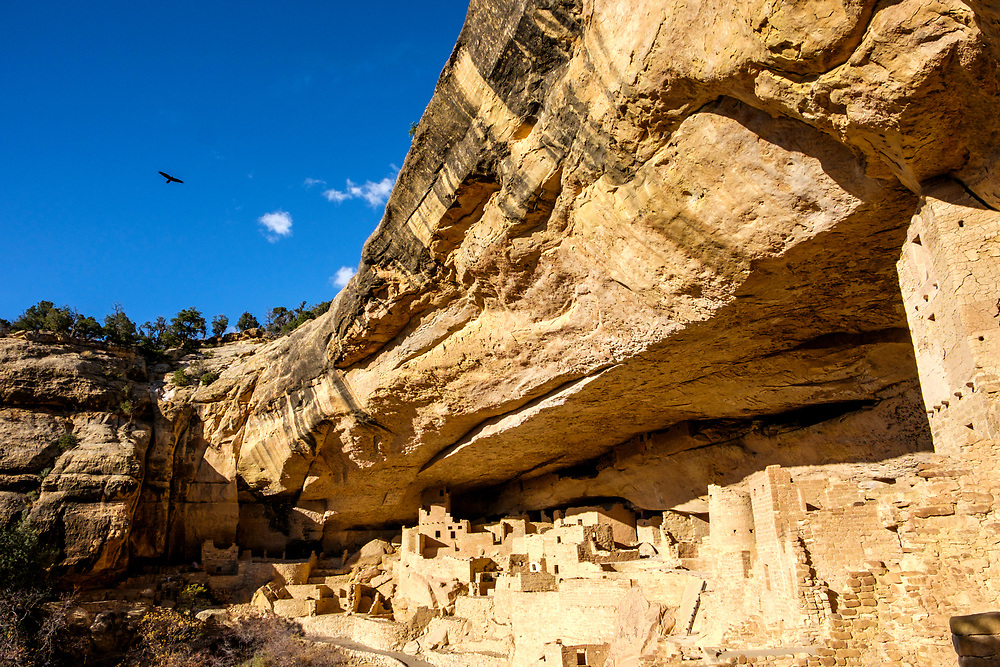 The raven flies overhead, a symbol of ancient puebloan culture.