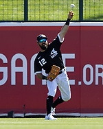 GLENDALE, ARIZONA - MARCH 05:  Adam Eaton #12 of the Chicago White Sox fields against the Seattle Mariners on March 5, 2021 at Camelback Ranch in Glendale Arizona.  (Photo by Ron Vesely) Subject:  Adam Eaton