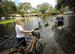 Andrew Myers, right, and his mother-in-law Debbie McCulley left, walk their bikes through the flooded Brookside Avenue in Kissimmee, FL, USA on September 11, 2017 as Brian Rondon and his dog Zeus check out the new waterway, also. Residents were out surveying the flooded streets and begninning to clean up debris after Hurricane Irma came through Central Florida late last night and early Monday morning. Photo by Jacob Langston/Orlando Sentinel/TNS/ABACAPRESS.COM