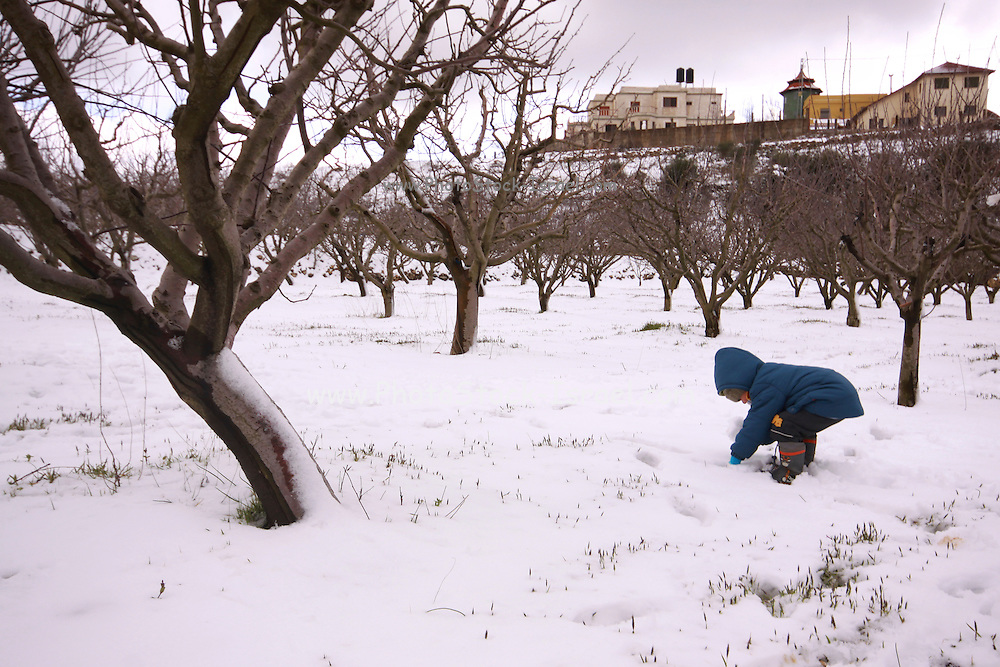 Young boy plays in the snow. Photographed in Israel, Beit Jann on Mount Meron