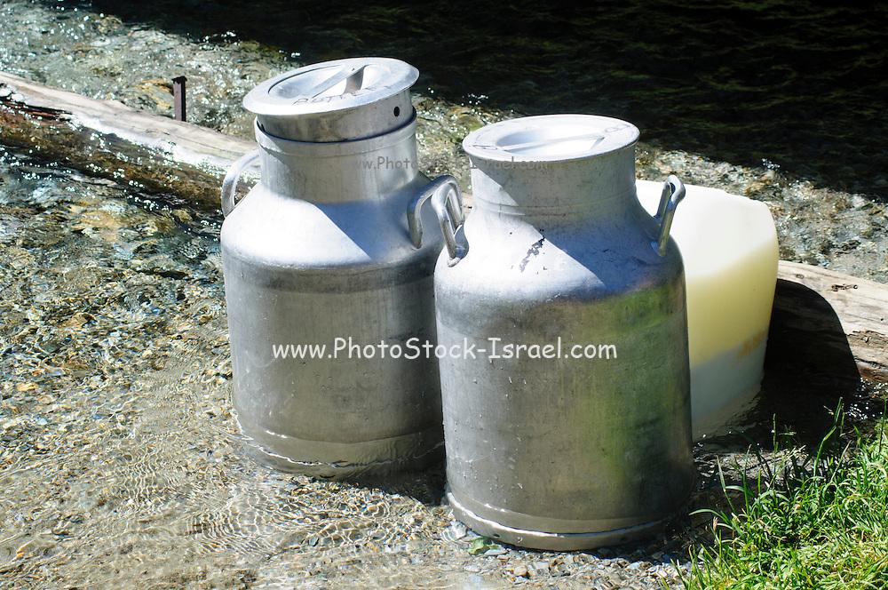 Metal Milk urns in dairy farm cooling in spring water. Photographed in Tirol, Austrial