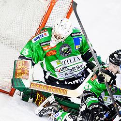 20140201: SLO, Ice Hockey - EBEL League, HDD Telemach Olimpija vs SAPA Fehervar AV 19