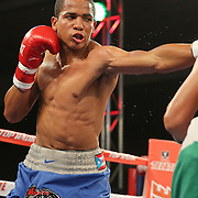 ORLANDO, FL - OCTOBER 04:  Felix Verdejo of Puerto Rico throws a punch against Sergio Villanueva of Mexico during their professional lightweight boxing match at the Bahía Shriners Auditorium & Events Center on October 4, 2014 in Orlando, Florida. Verdejo won by a TKO in the third round. (Photo by Alex Menendez/Getty Images) *** Local Caption *** Felix Verdejo; Sergio Villanueva