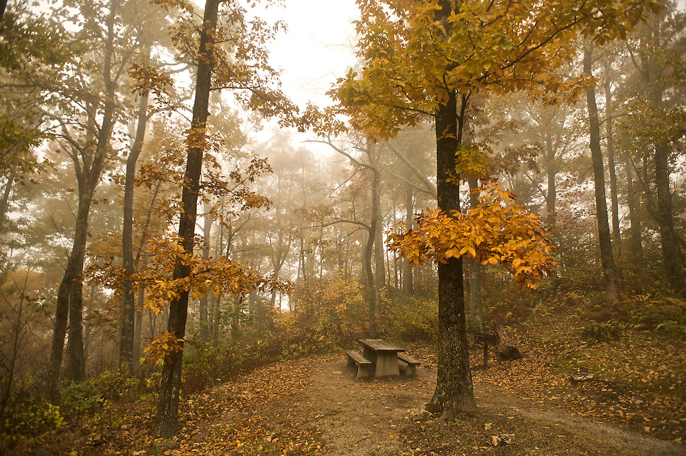 A picnic table and grill sit beneath the golden leaves of Fall at Table Rock, North Carolina
